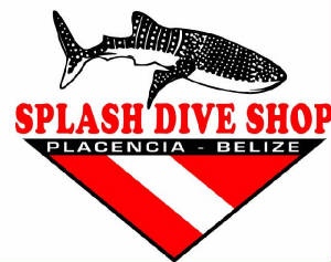 CLICK HERE TO GO TO SPLASH DIVE CENTER